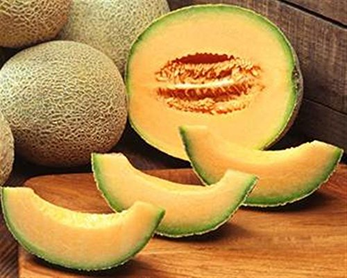 ASA AMERICAN heirloom heritage melon seeds. HONEY ROCK MUSK MELON.  Certified French organic grower- Buy Online in India at desertcart.in.  ProductId : 121479644.