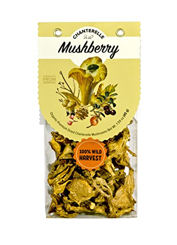 Mushberry Kosher Dried Chanterelle Mushrooms 1.6 oz 45 g | Truly Wild and Organic | Fruity Aroma | 2018 Harvest | from Siberia