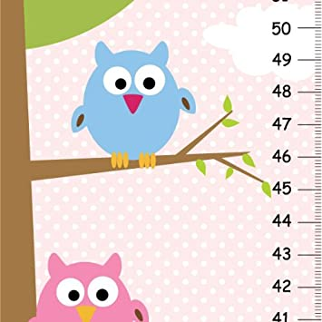 Amazon Canvas Owl Growth Chart For Girls Pink Nursery Decor