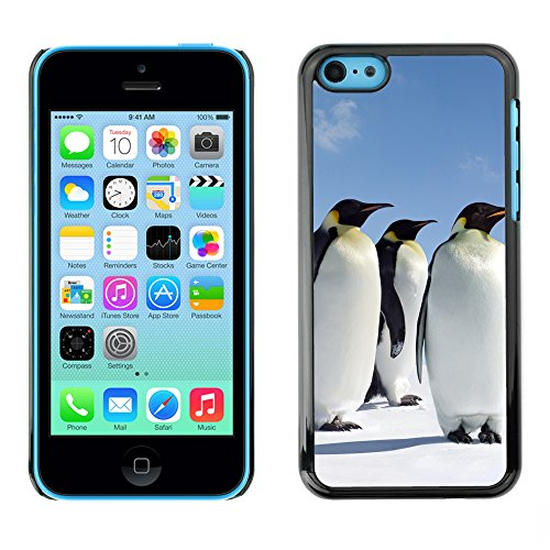 Hülle Case Schutzhülle Cover Premium Case // V00002644 Penguins // Apple iPhone 5C