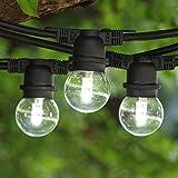 LED Commercial String Light - 100 ft Black Cord - LED G50 Prof Bulb CW