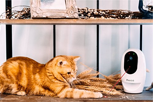 Best Pet Camera, PetChatz HD Pet Camera Two-Way Audio/Video System that Dispenses Treats, Scents and Provides Motion/Noise Sensing