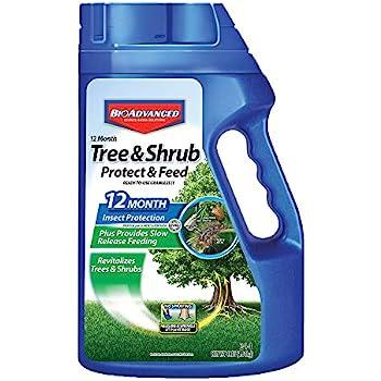 Amazon Com Bayer Advanced 701700 12 Month Tree And Shrub