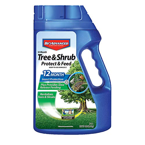Bayer Advanced 701700 12 Month Tree and Shrub Protect and Feed Granules, 4-Pound - Evergreen Deciduous Trees