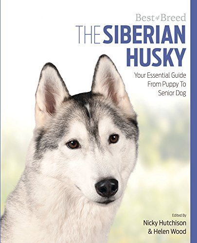 Essential Siberian Husky (The Siberian Husky: Your Essential Guide From Puppy To Senior Dog (Best of Breed) by Hutchinson Wood & Hutchinson)