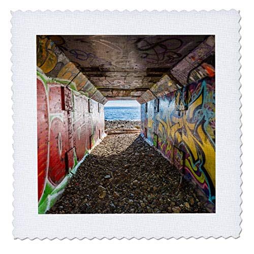 3dRose Elysium Photography - Landscape - Graffiti on Rail Tunnel, 1001 Steps, Surrey, British Columbia - 16x16 inch Quilt Square (qs_289564_6)