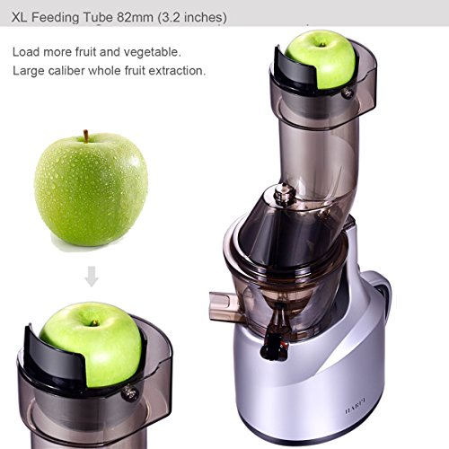 Slow Juicer, Wide Mouth Masticating Juicer for Home Appliance, 240W, Quiet Motor by JQUEEN (Image #4)