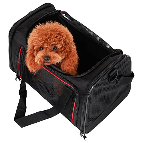 A4Pet Collapsible Pet Travel Carrier