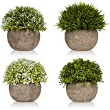 West Dwelling Mini Potted Plants – Small Fake Artificial Succulents For Decoration – Office Desk Home Succulent Plant Decor – Round Pots – Set of 4 For Sale