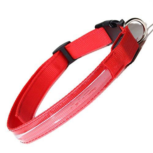 (Paws & Pals LED Pet Neck Collar Flashing Color Light Up Night Safety Strap, Medium, Red)