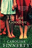 img - for The Last Goodbye book / textbook / text book