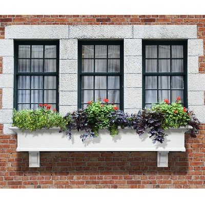 Mayne Yorkshire II 72'' Window Box Combo with Corbel Brackets White 6' by Home Wishes