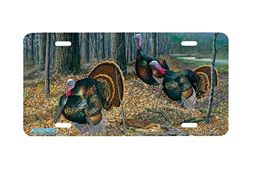Riding the Coattails - Turkey Wildlife Art Print - License Plate by Randy McGovern from Airstrike, Inc.