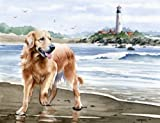"""Golden Retriever At the Beach"" Dog Art Print By Artist DJ Rogers"