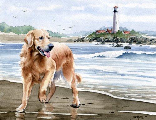 Golden Retriever At the Beach Art Print By Watercolor Artist DJ Rogers