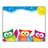 Trend Enterprises T-68117BN Owl-Stars! Terrific Labels, 36 per Pack, 6 Packs
