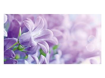 Amazonde Grazdesign 991128110x57 Sichtschutzfolie Lila Blumen