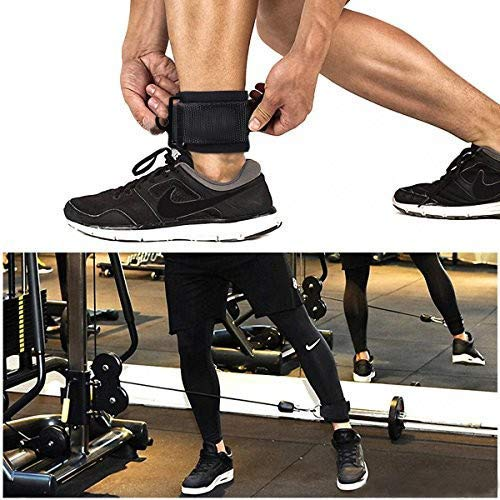FITSY® Adjustable Padded Ankle Straps for Cable Machine Gym Attachment, Legs, Butt, Glute Workout Exercises for Men and Women Price & Reviews