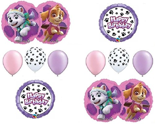 (PAW PATROL SKYE & EVEREST 10 PC. Birthday Balloons Decoration Supplies Party Chase Ryder)