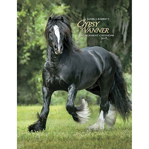 Gypsy Vanner Horse 2017 Softcover Engagement Weekly Planner Calendar