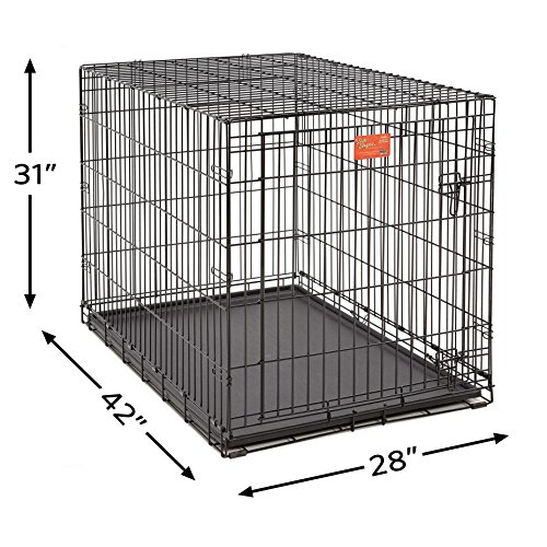 Large Product Image of Large Dog Crate | MidWest Life Stages Folding Metal Dog Crate | Divider Panel, Floor Protecting Feet, Leak-Proof Dog Tray | 42L x 28W x 31H Inches, Large Dog