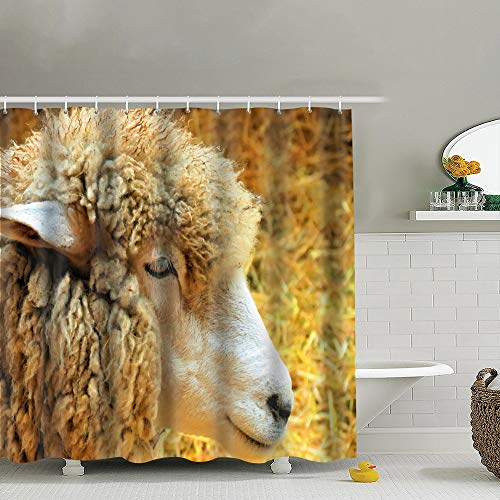 - Sheep Farm Animals Wildlife Dolly Industrial Fabric Shower Curtain, Water-Repellent Liner for Master, Guest, Kid's, College Dorm Bathroom 60X72 Inch