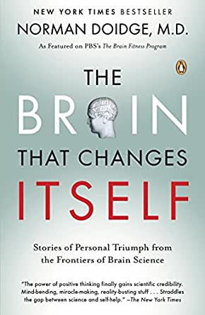 The Brain That Changes Itself Ebook