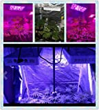 Growstar 600W LED Plant Lights for Indoor