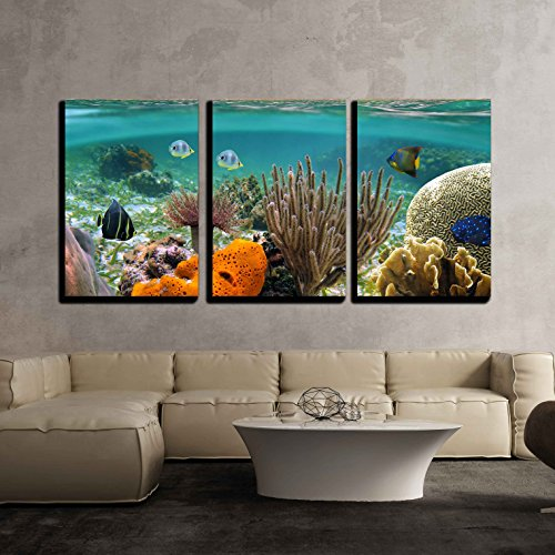 Wall26   3 Piece Canvas Wall Art   Underwater And Surface View With Beach And Coconuts Trees   Modern Home Decor Stretched And Framed Ready To Hang   24 X36 X3 Panels