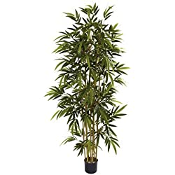 Nearly Natural 5362 Bamboo Tree, 6-Feet, Green