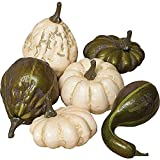 Mesh Bag of Decorative Pumpkins/Gourds