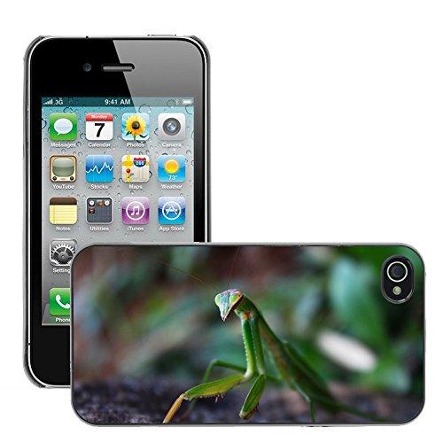 Just Phone Cases Hard plastica indietro Case Custodie Cover pelle protettiva Per // M00128783 Mantis Insecte Nature Macro // Apple iPhone 4 4S 4G