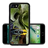 MSD Premium Apple iPhone 7 Aluminum Backplate Bumper Snap Case iPhone7 IMAGE ID 34571990 poison dart frog Dendrobates tinctorius from the Amazon rain forest near the border of Suriname and