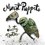 51eMH3gHcUL. SL160  - Meat Puppets - Dusty Notes (Album Review)