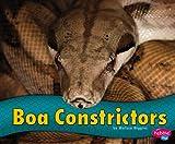 Boa Constrictors, Melissa Higgins, 1476520674