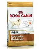 Royal Canin Labrador Retriver Adult Breed Health Nutrition, 3 Kg