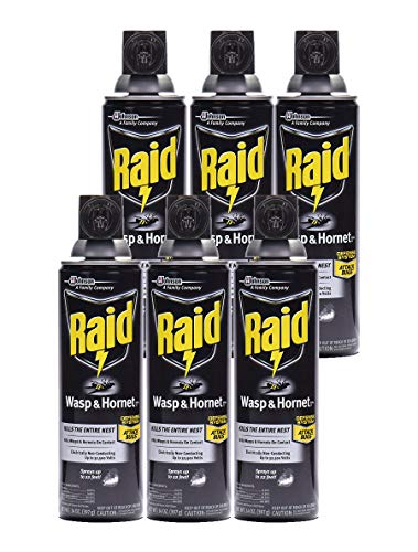 Raid Wasp & Hornet Killer Spray, 14 OZ (Pack - 6)