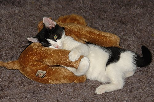 Home Comforts LAMINATED POSTER Kitten Loves Toy Animals Post
