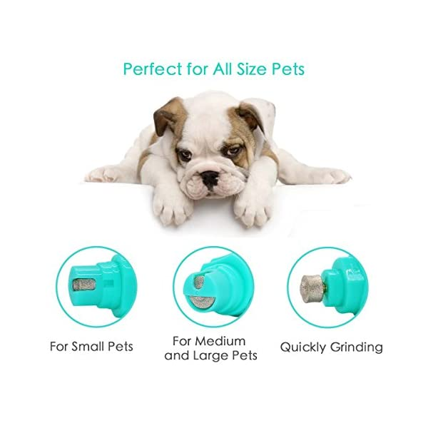 2 Speed Pet Nail Grinder Electric Nail Filer for Animals USB Rechargeable Paw Trimmer Clipper Pet Claw Grooming Kit for Dogs, Cats, Small Animals 6