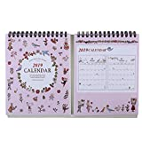Idiytip Creative 2019 Year Desktop Calendar Daily Scheduler Yearly Agenda Organizer,Pink