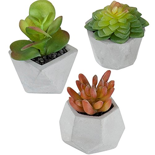 MyGift Artificial Potted Succulent Plants in Geometric Gray Planters, Set of 3 (Assortment 3)
