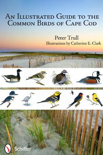 Birds Cape Cod (An Illustrated Guide to the Common Birds of Cape Cod)
