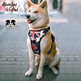 Front Range Dog Harness No-Pull Pet Harness Adjustable Outdoor Pet Vest 3M Reflective Oxford Material Vest for Dogs Easy Control for Small Medium Large Dogs (Large, Blue & White)
