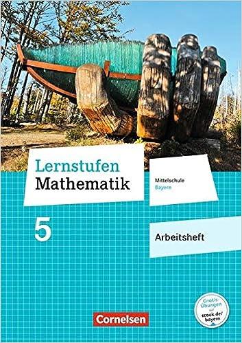 Lernstufen Mathematik 5 – Arbeitsheft