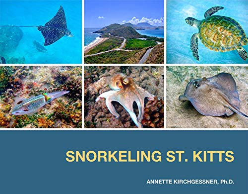 Pdf Outdoors Snorkeling St. Kitts