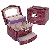 KUKI SHOP Soft Felt 3-Layer Large Capacity Portable Jewelry Storage Organizer Box Case with Lock and Mirror for Necklace Earrings Bracelets Hairpieces Rings Watches Brooches (Violet)