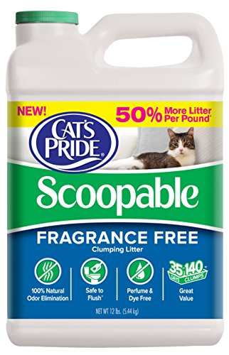 Cat S Pride Lightweight Scoopable Unscented Cat Litter Review