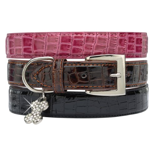 "Zack & Zoey Faux Crocodile Dog Collar 11-14"" Black"