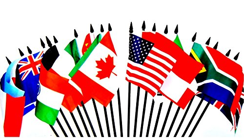 G-20 (Group of 20) WORLD FLAG SET--20 Polyester 4