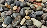 Natural Aquarium Gravel Pebble for Freshwater or Saltwater Tanks and Ponds (Mexican Beach Mixed)